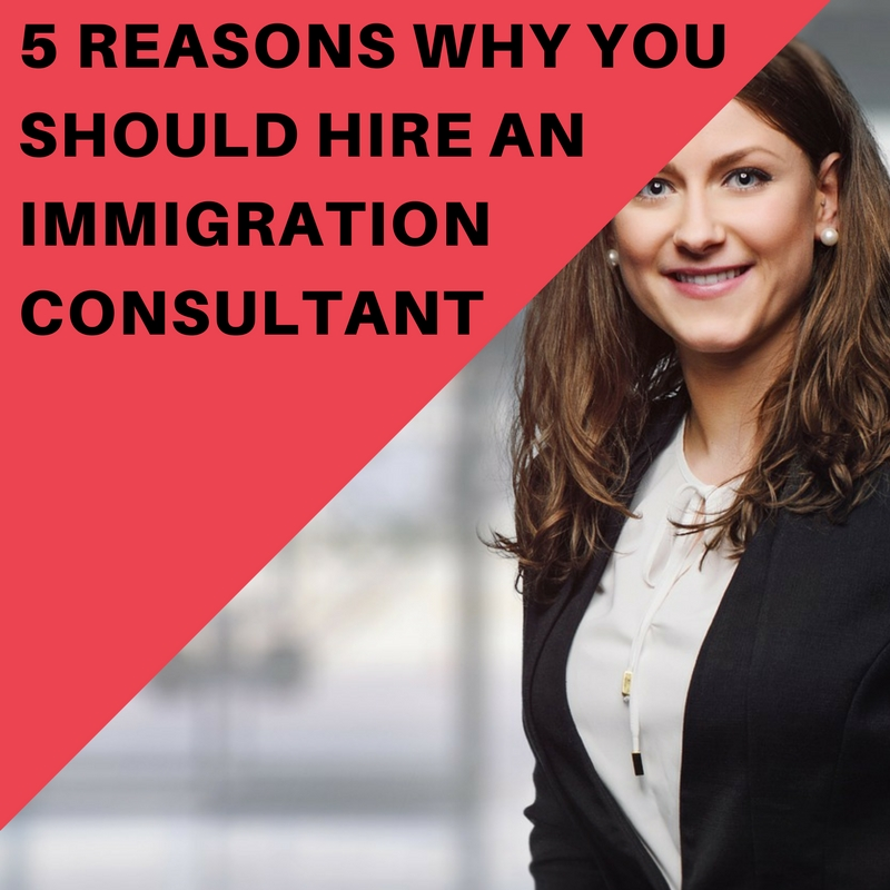 5 Reasons Why You Should Hire an Immigration Consultant